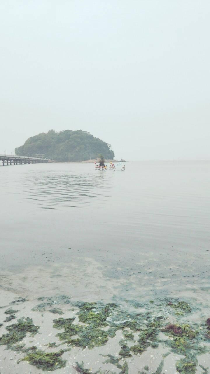 陸に戻ったら、本当に終わっちゃうなあ。いつまでもみんなで神輿を担いで海の中にいたい、とちょっとだけ思いました